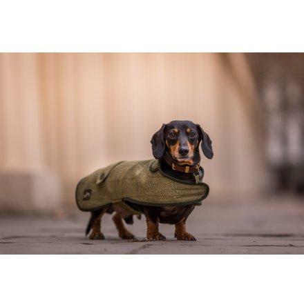 Tax Hundtäcke - Tweed