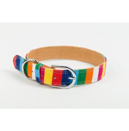 CAMDEN koppel & halsband