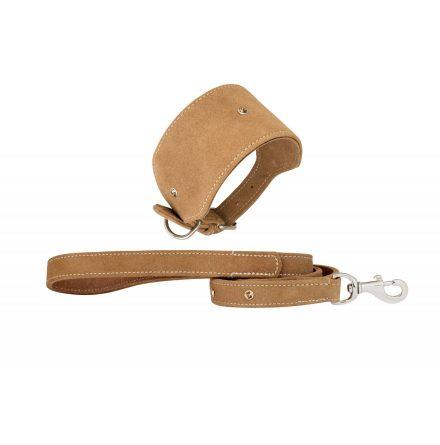 Paddington koppel & halsband i skinn